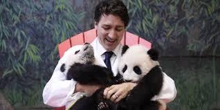 JT w Pandas